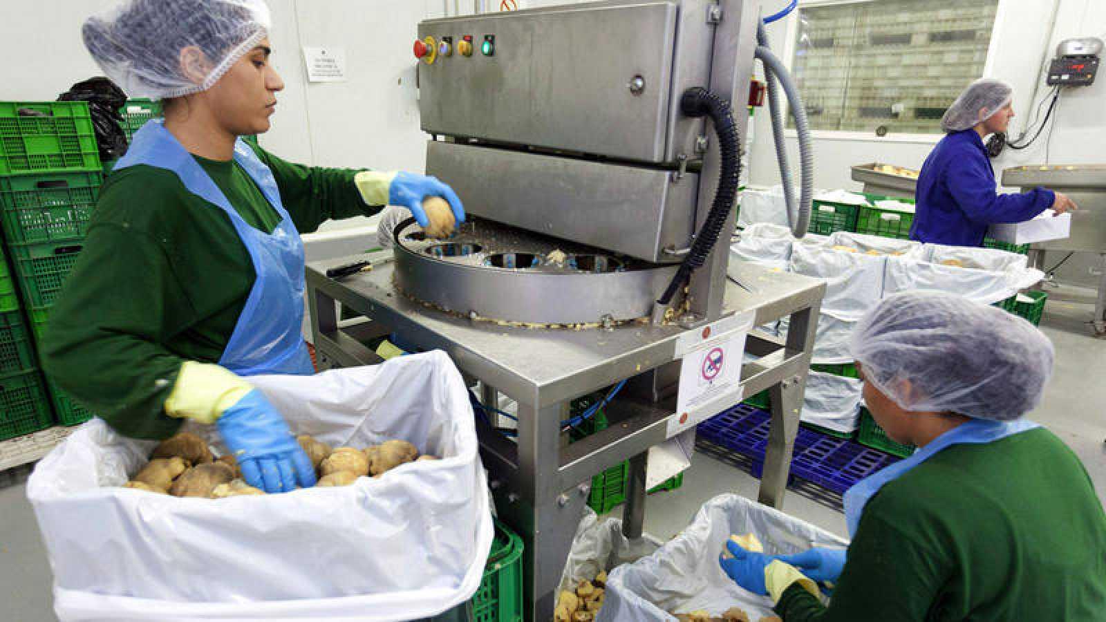 Varias mujeres trabajando en una fábrica de dulces de Ávila