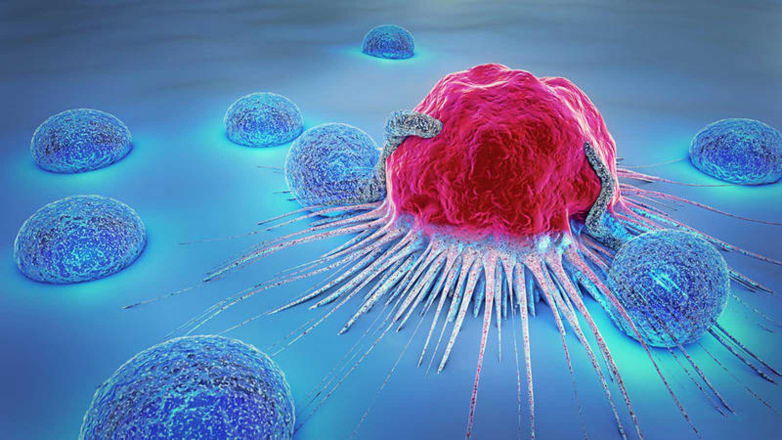 Ilustración 3D de una célula cancerosa y de linfocitos