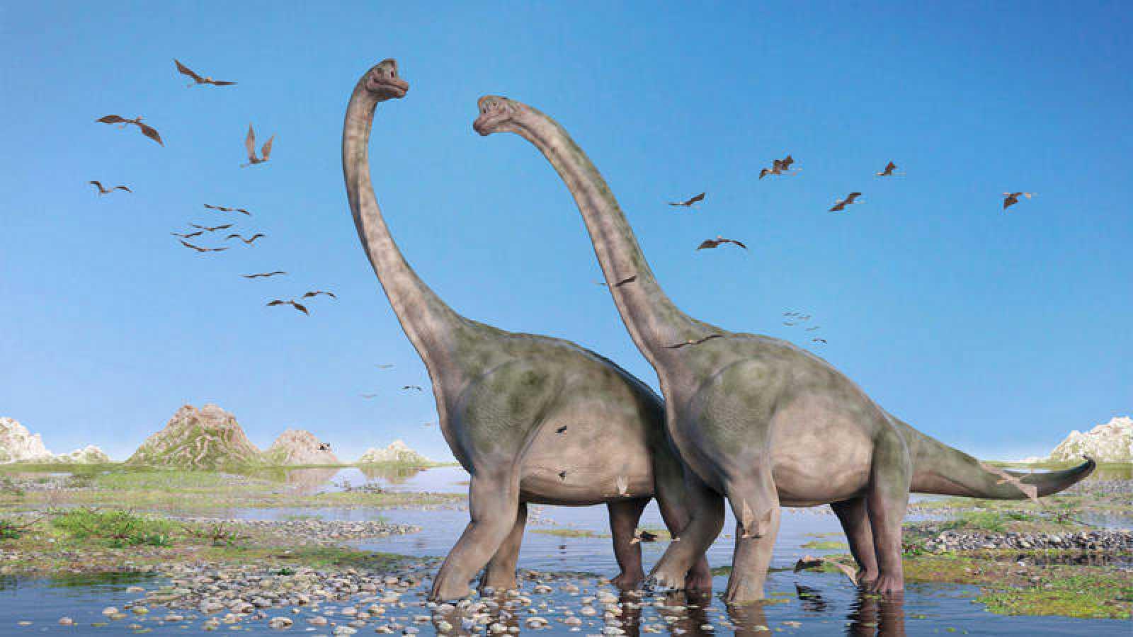 Ilustración de varios dinosaurios