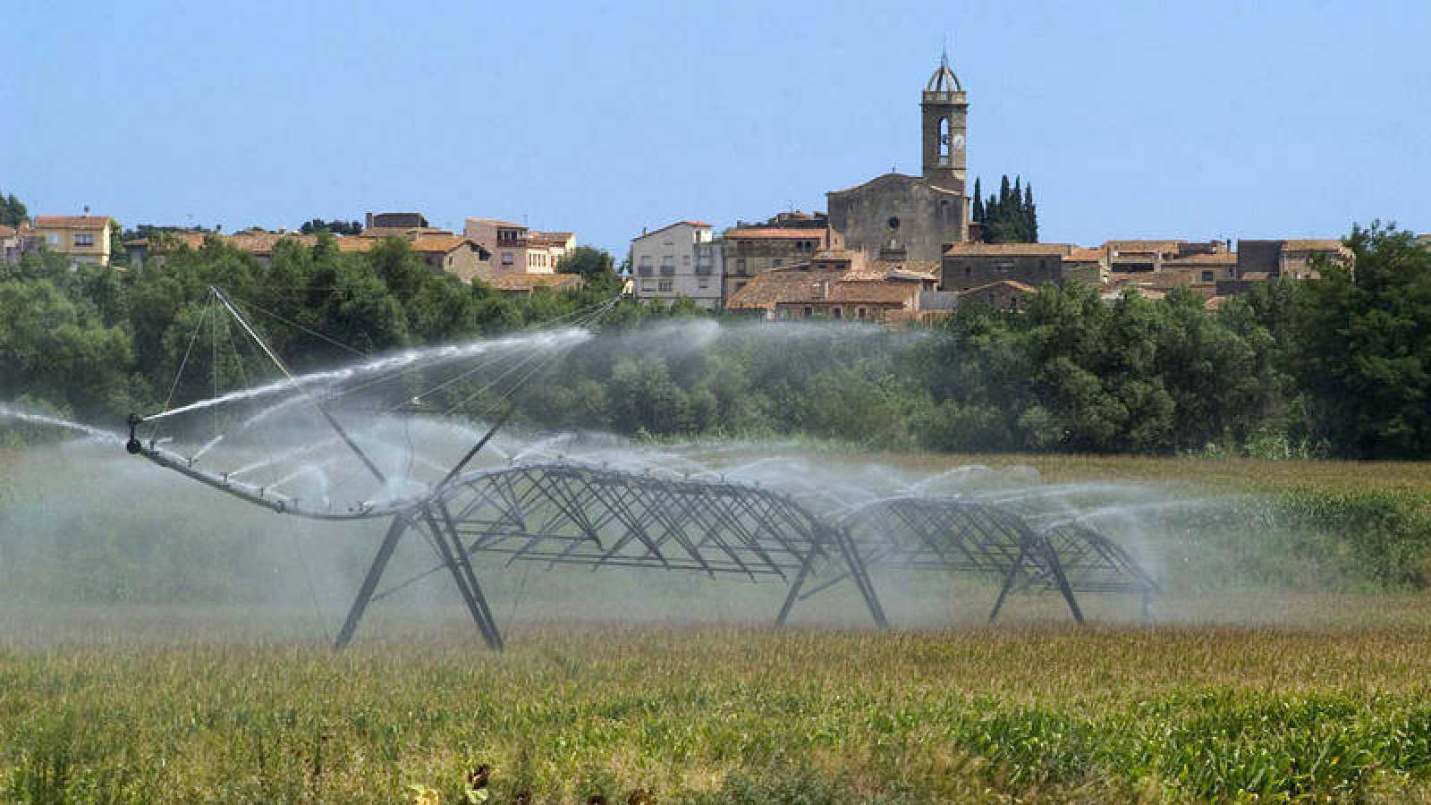 Las huella hídrica es la cantidad de agua necesaria para producir los alimentos.