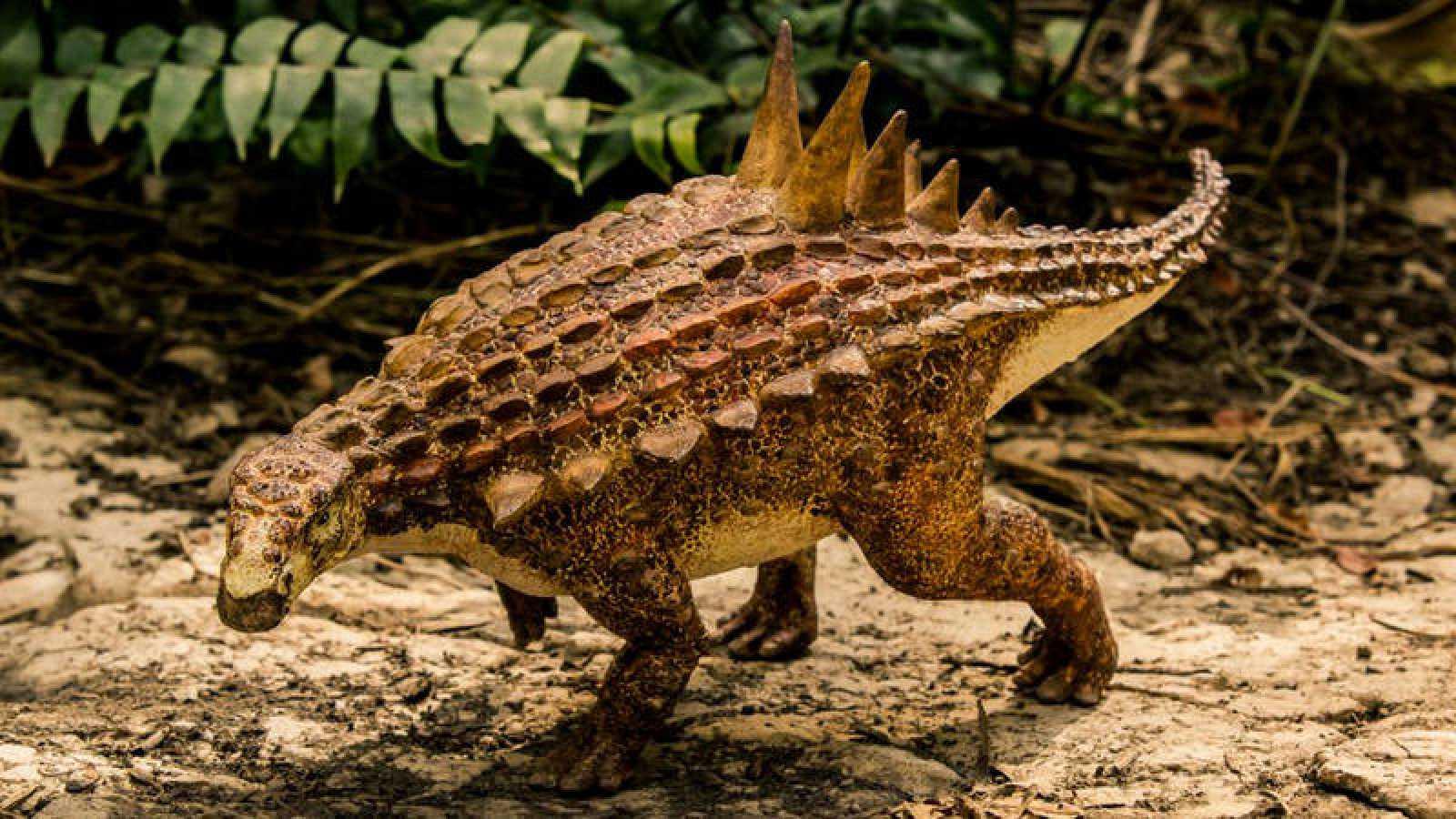 Hallan Nueva Especie De Dinosaurio En Mexico Rtve Paisajes de baja california pasado y presente. hallan nueva especie de dinosaurio en