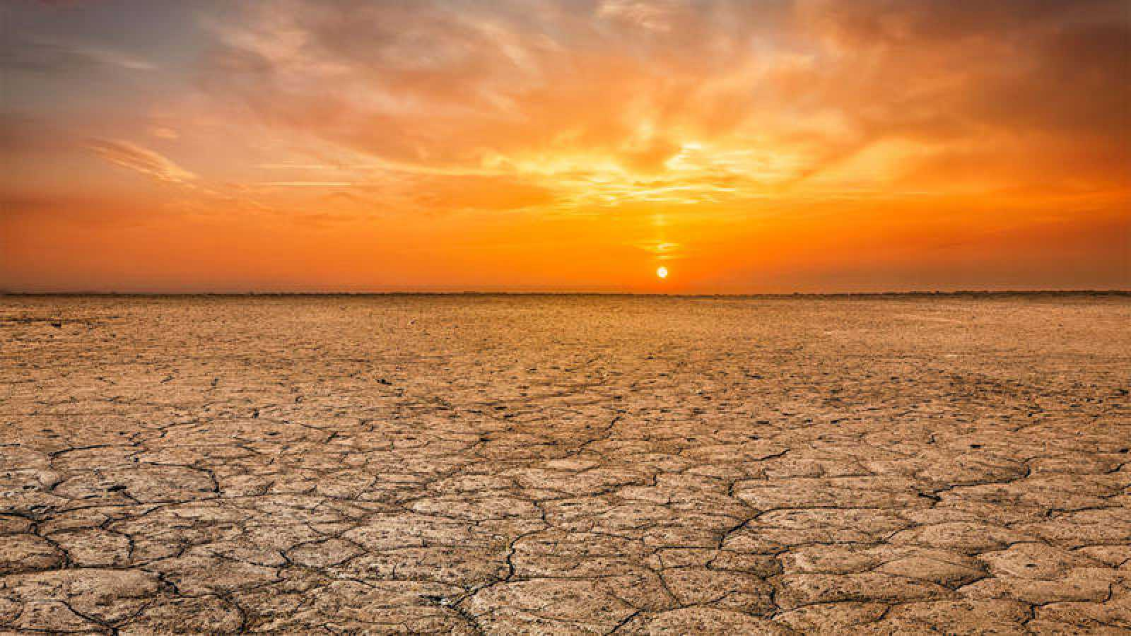 Los científicos aseguran que la única solución posible es que se tome ¿una acción climática radical¿.