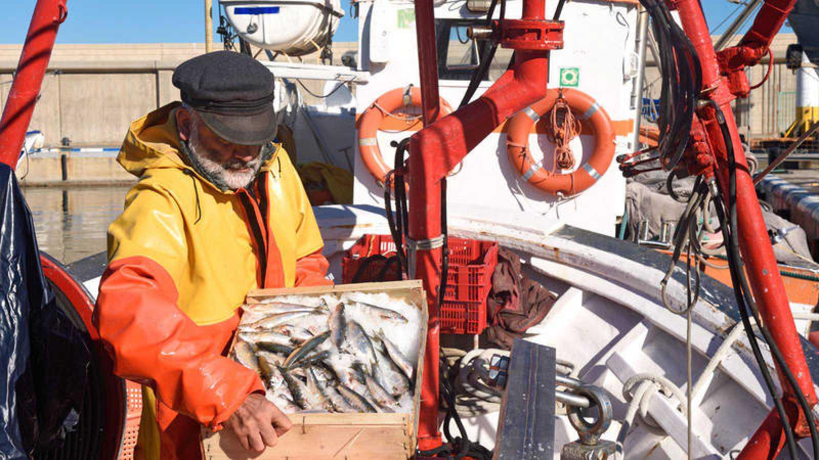 El sector pesquero español vive días de incertidumbre ante el 'Brexit'