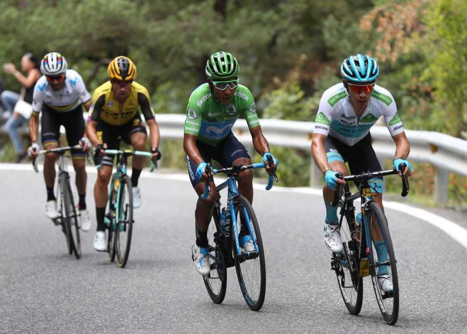 """El ciclista colombiano del equipo Astana, Miguel Ángel """"Superman López""""; su compatriota del equipo Movistar, Nairo Quintana; el eslovaco Primoz Roglic y el español Alejandro Valverde, durante la novena etapa de la 74 Vuelta a España 2019."""