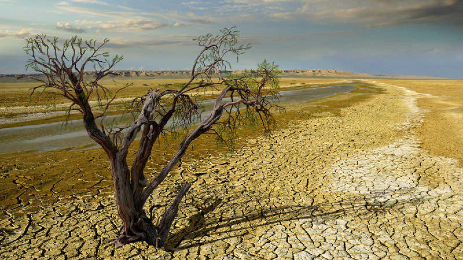 La meta prioritaria del Acuerdo de París es que la temperatura media del planeta en 2100 no supere los 2ºC con respecto a los niveles preindustriales.