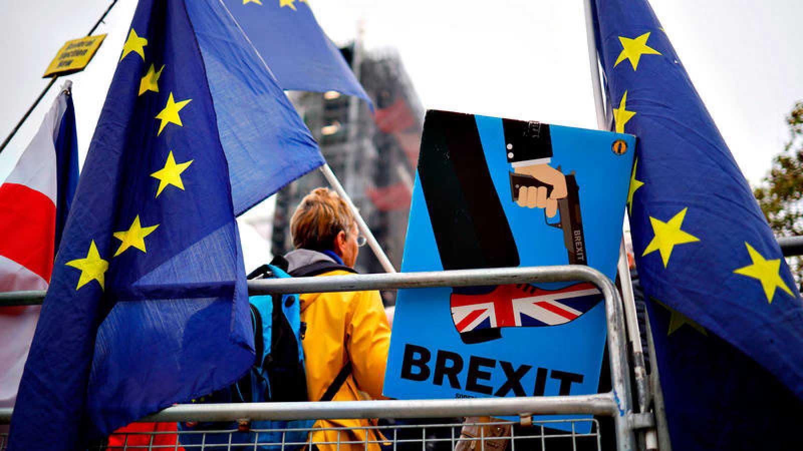 Manifestación en contra del 'Brexit' en las inmediaciones del Parlamento de Westminster, en Londres