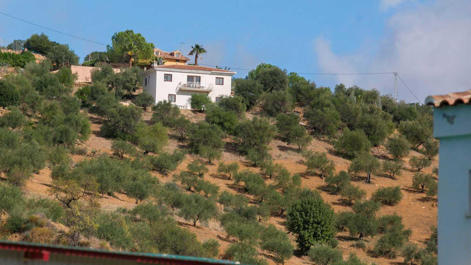 Bélgica el sospechoso del asesinato de una mujer en Tolox (Málaga)