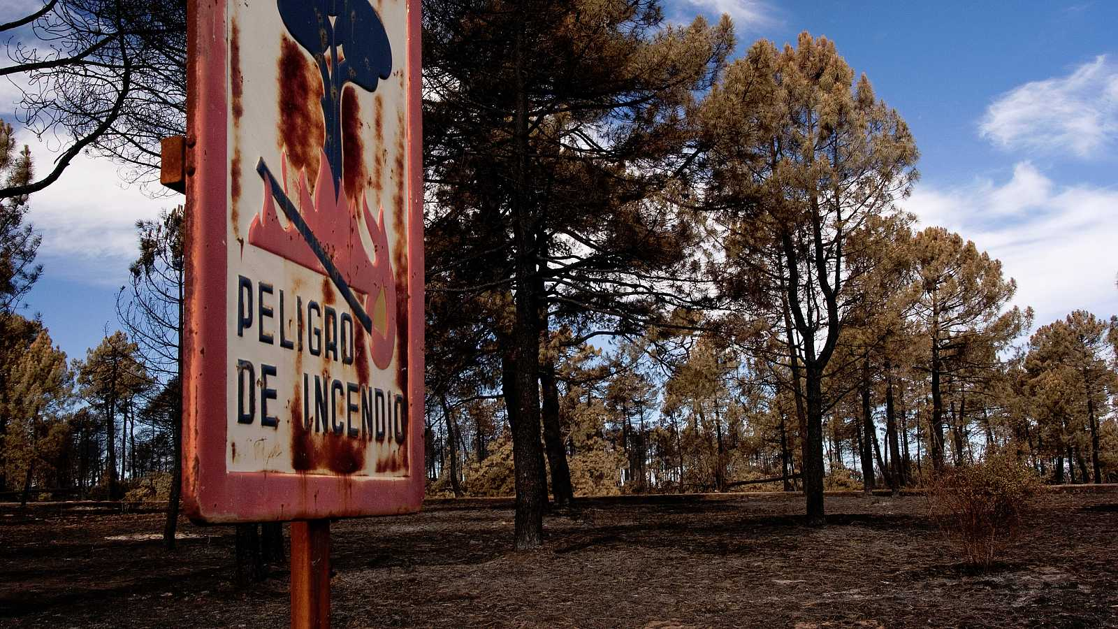 El paisaje español, ya de por sí altamente inflamable, se verá muy amenazado por el aumento de sequías.