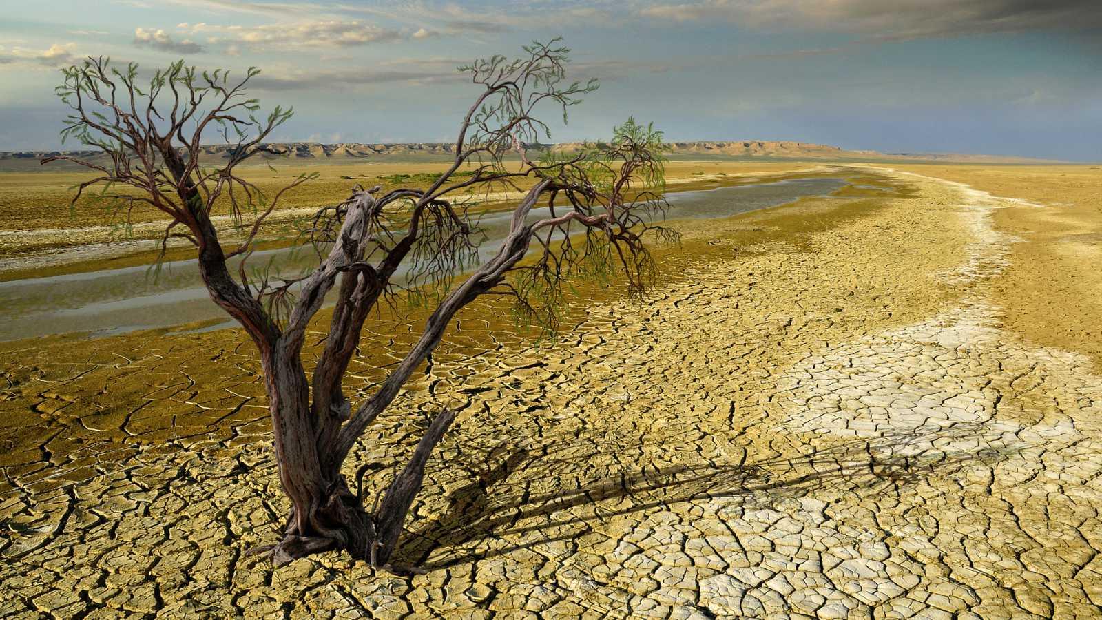 También 2010-2019 se alza como la década más cálida registrada.