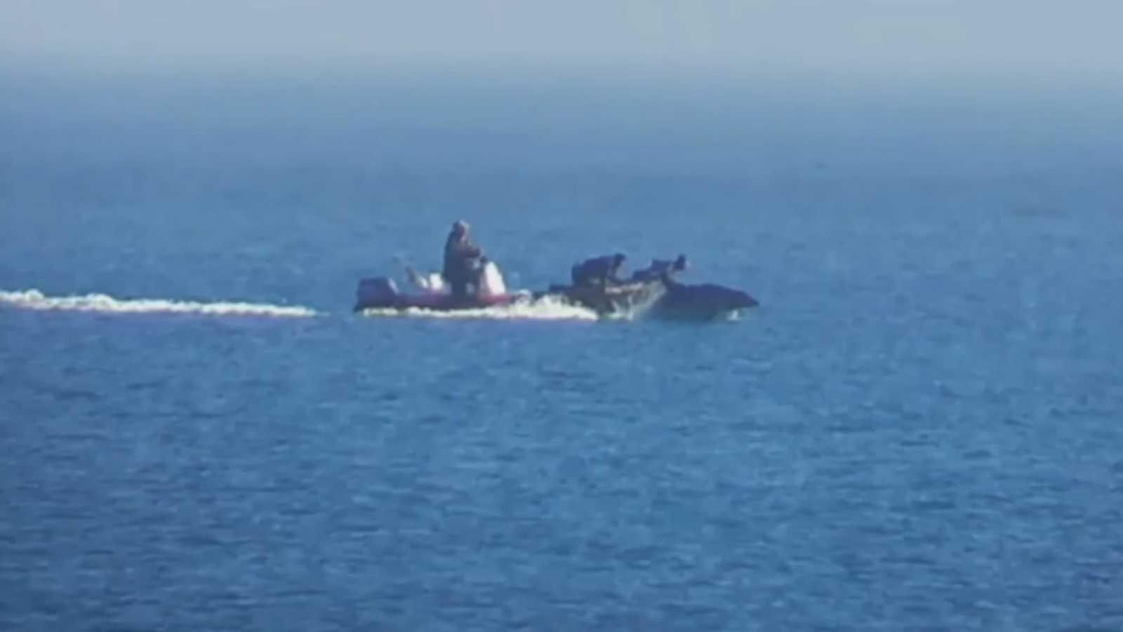 Pantallazo del vídeo en el que se puede ver la persecución a los delfines.