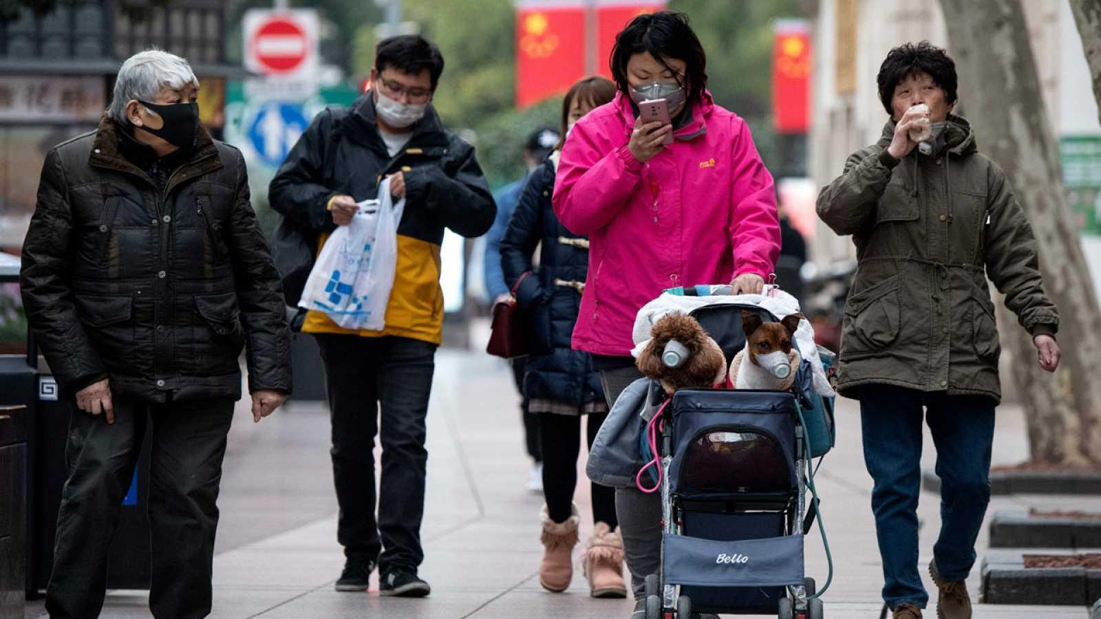 Una mujer pasea a sus perros protegidos con mascarillas en Shanghai