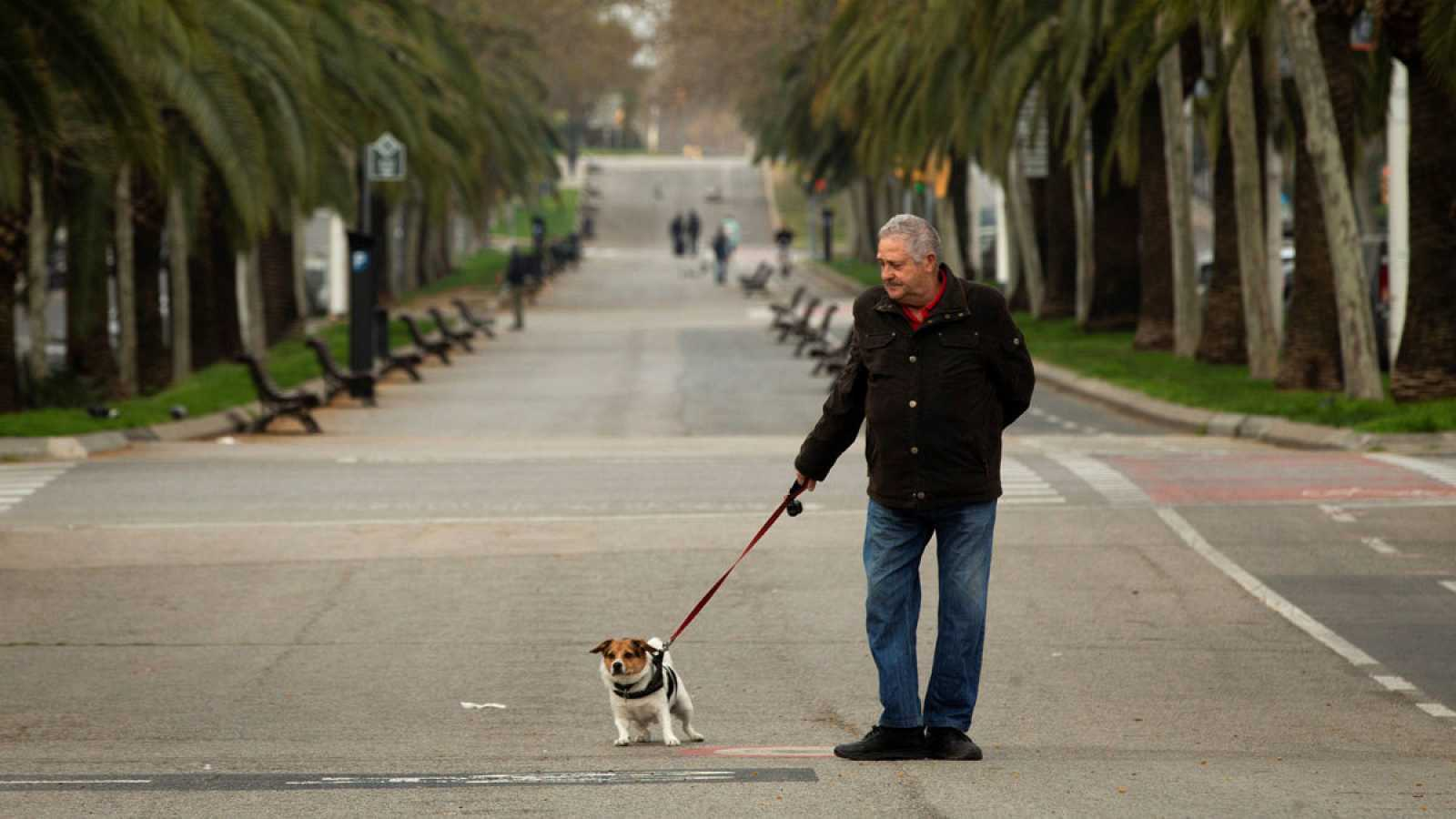 Un hombre pasea a su perro en Barcelona