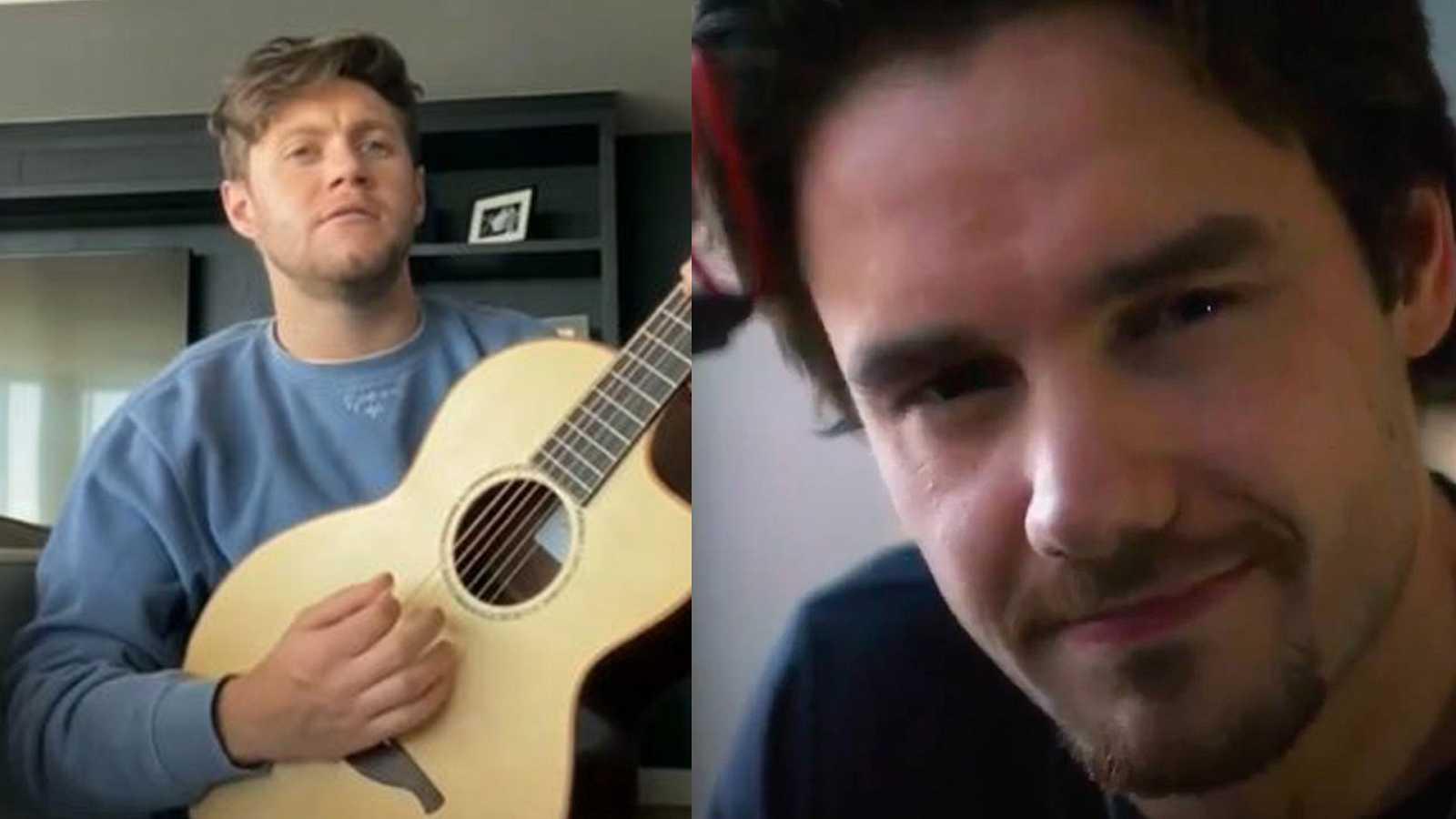 Naill Horan y Liam Payne han participado en el megaevento solidario organizado por la OMS y Global Citizen