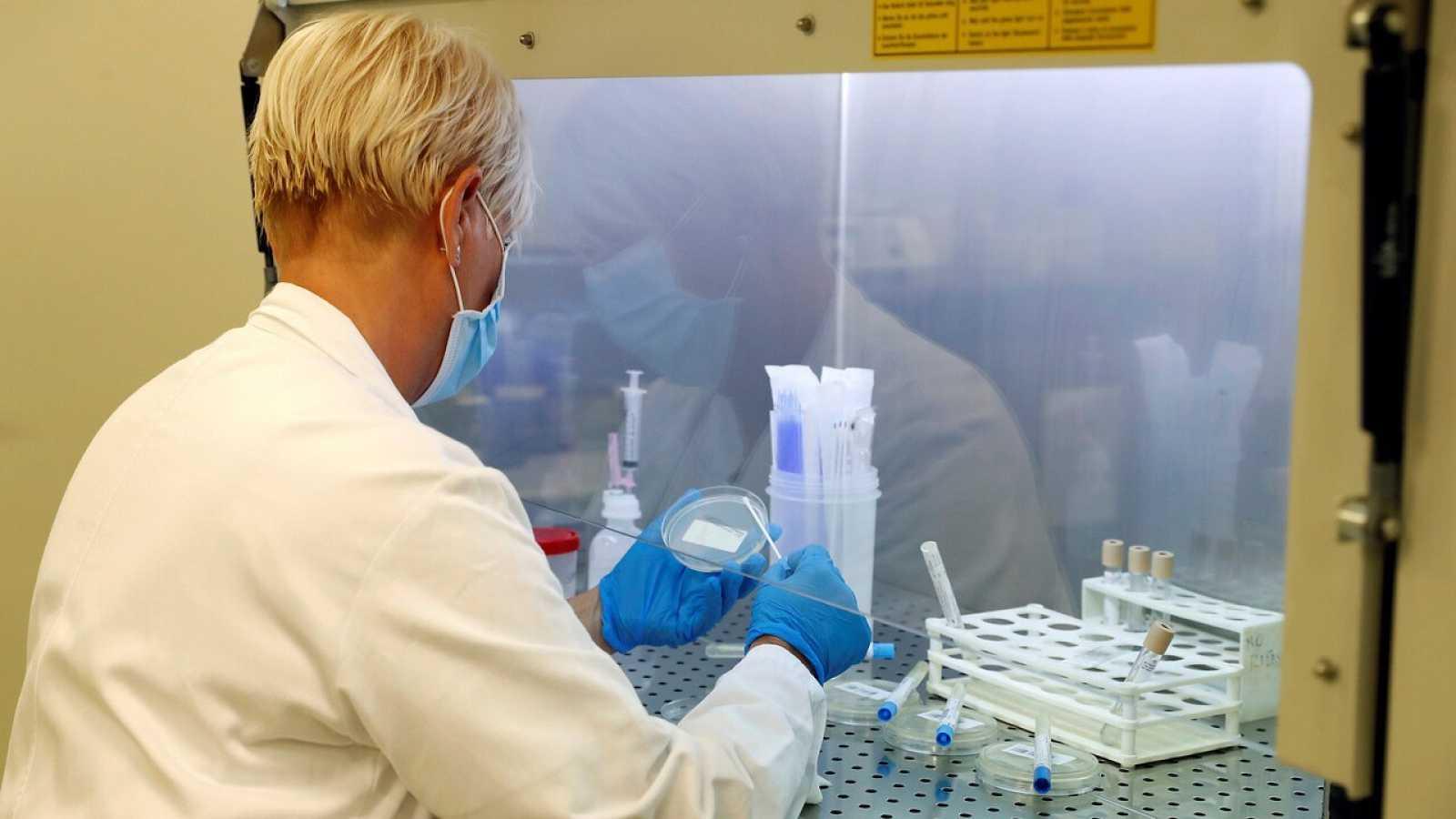 Una sanitaria analiza muestras en el laboratorio