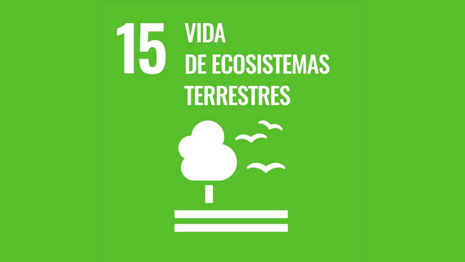 Objetivo de desarrollo sostenible 15