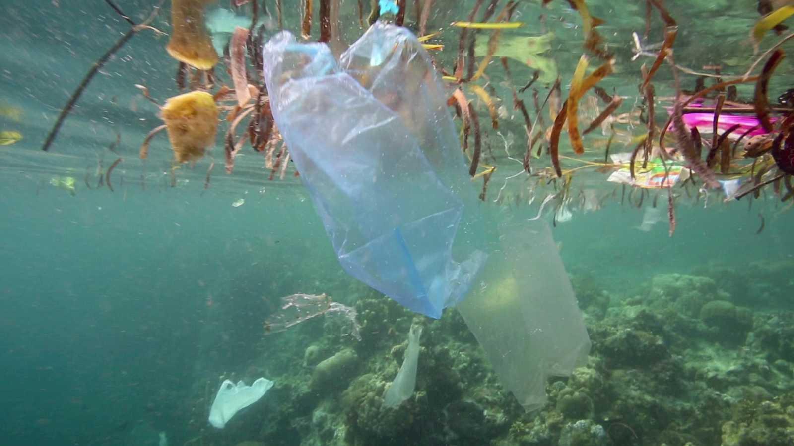'Plástico en el mar'