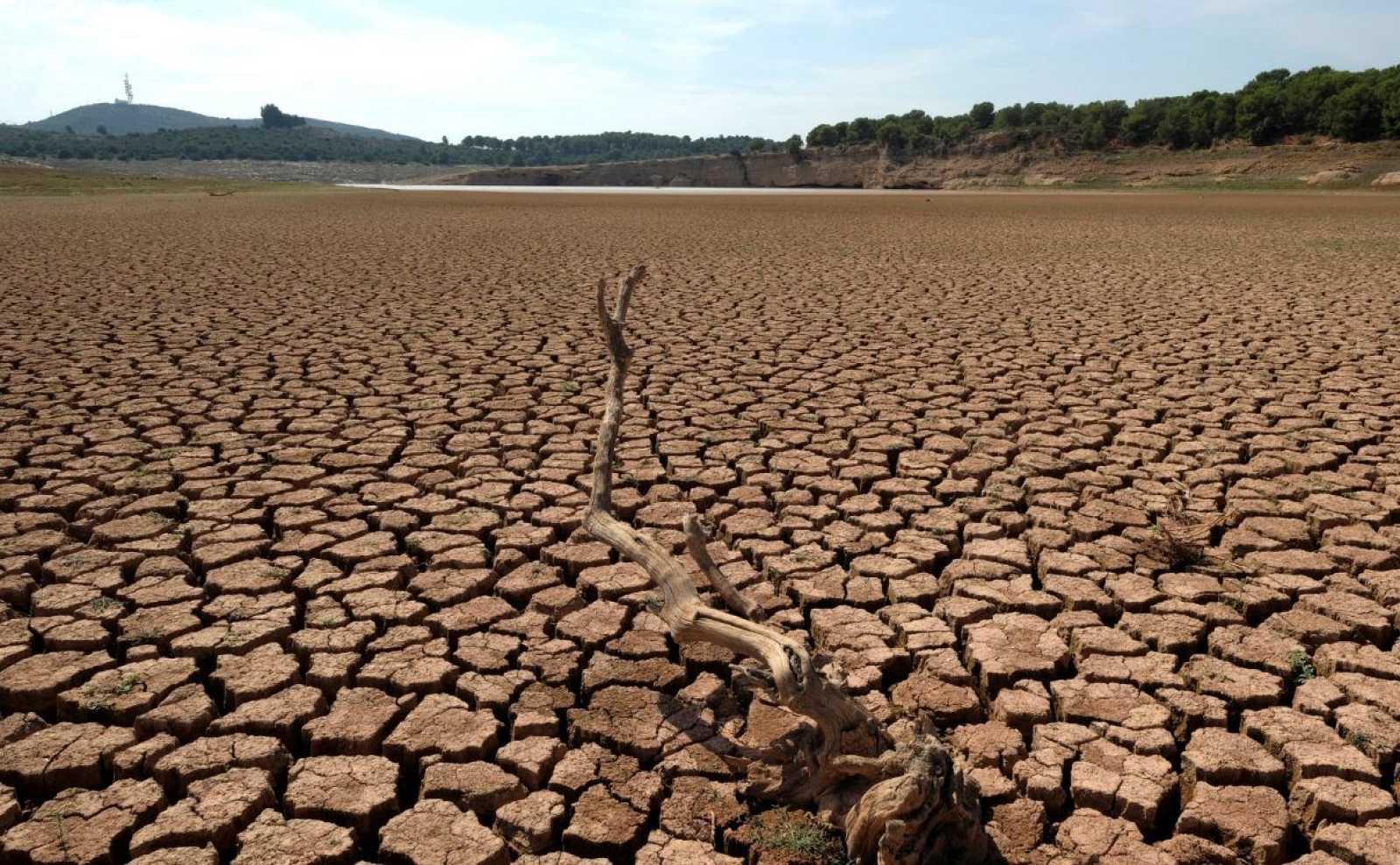 ¿Cómo nos afecta la sequía en España?