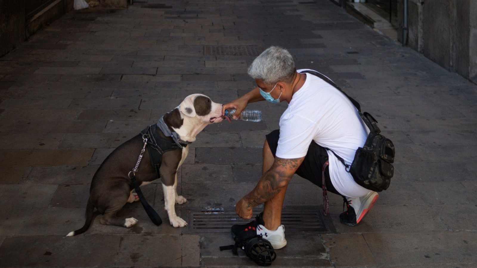 Un hombre da de beber a su perro en el centro de Barcelona