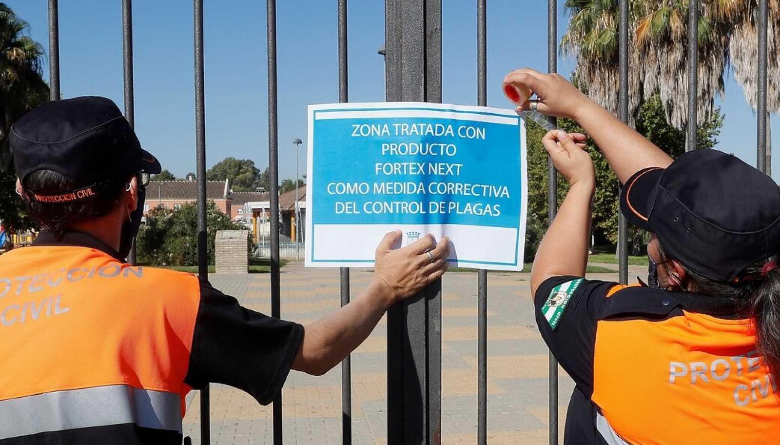 El primer fallecido por el virus del Nilo en Andalucía estaba ingresado en la UCI del hospital Virgen del Rocío de Sevilla