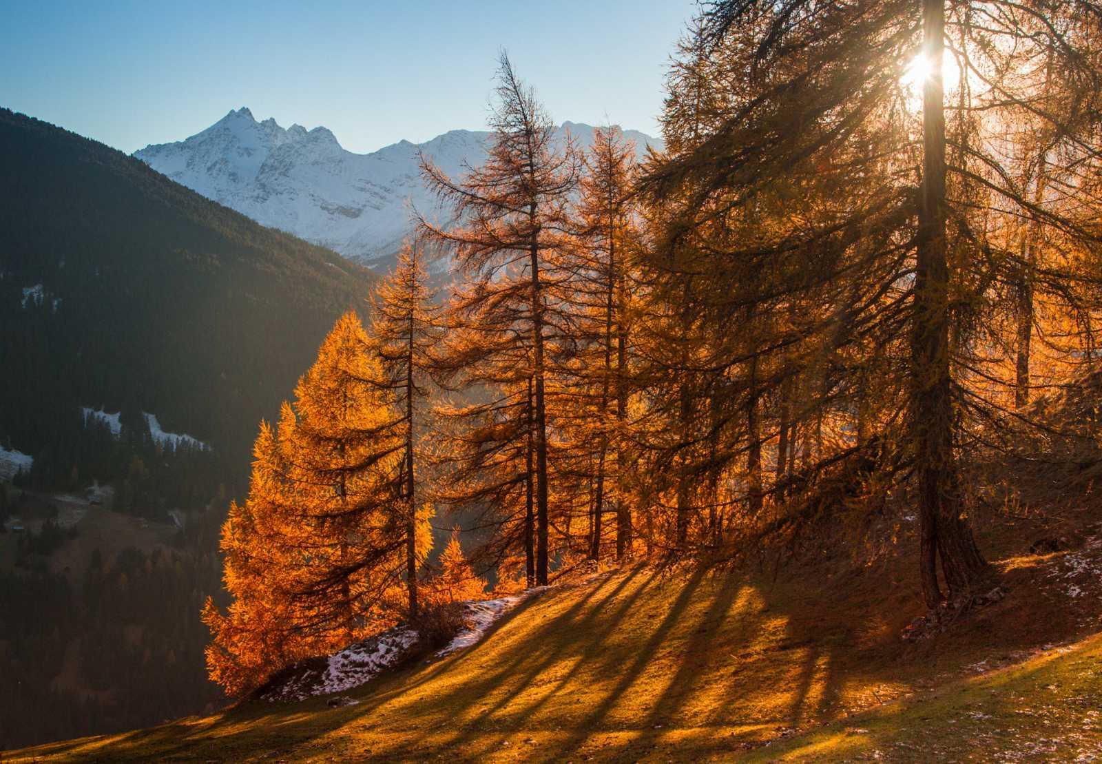 Llega el otoño astronómico