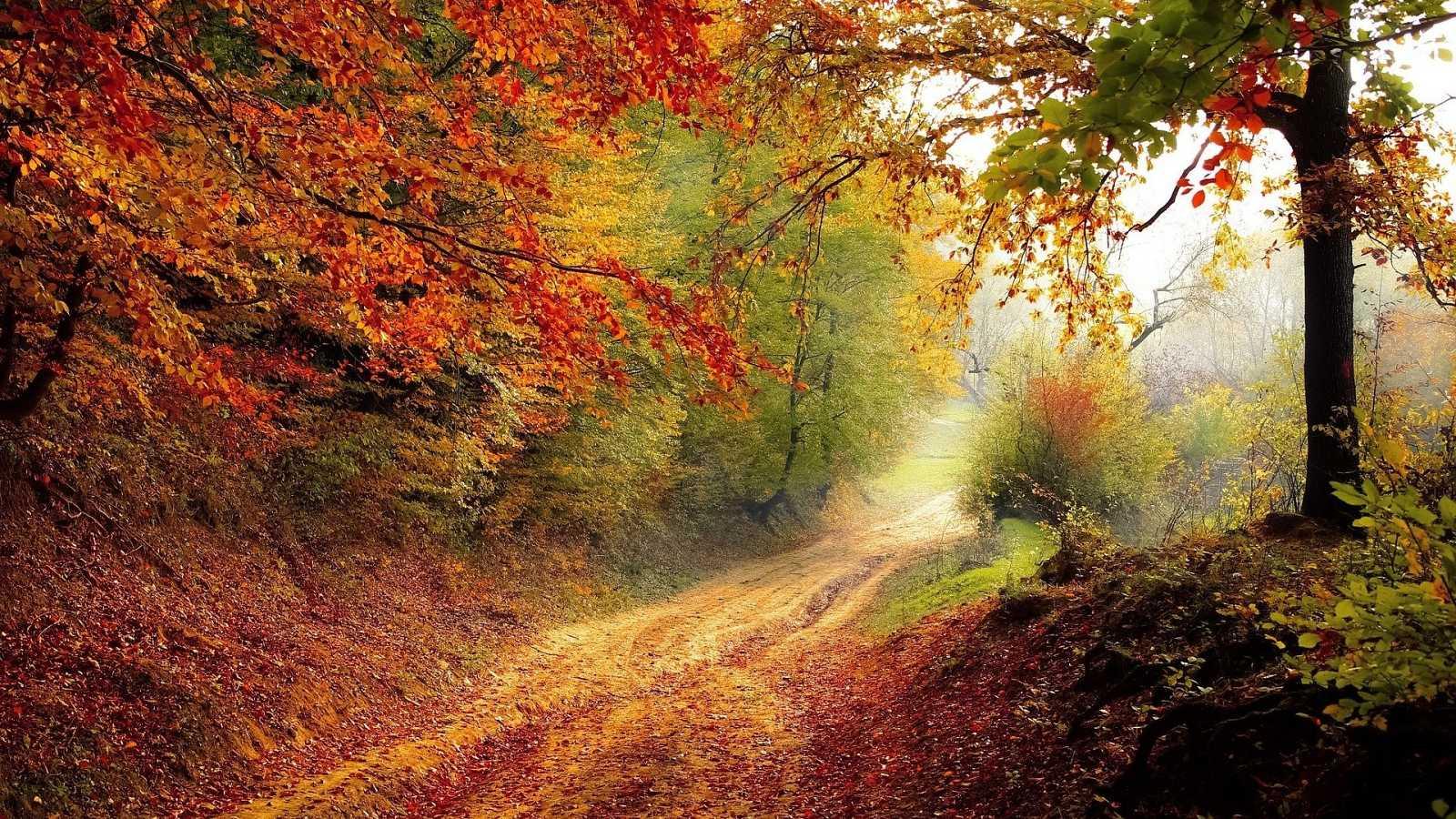 Los mejores lugares en España para visitar en otoño