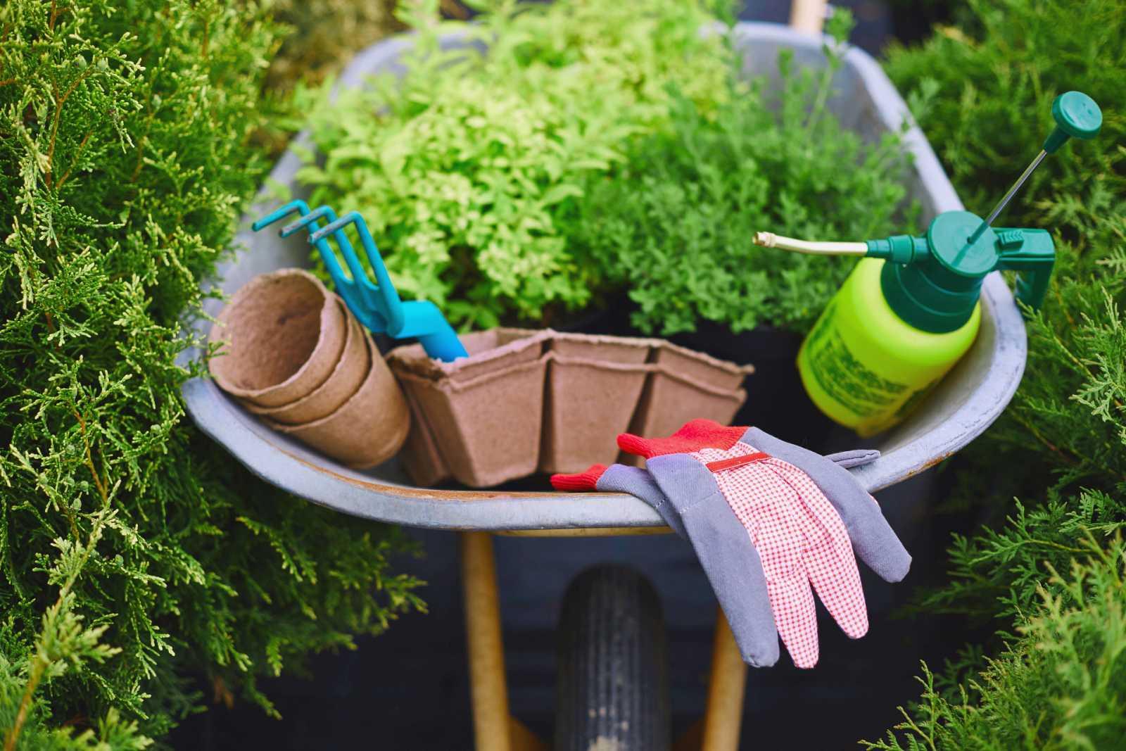 Trucos de jardinería: ¡manos a la obra!