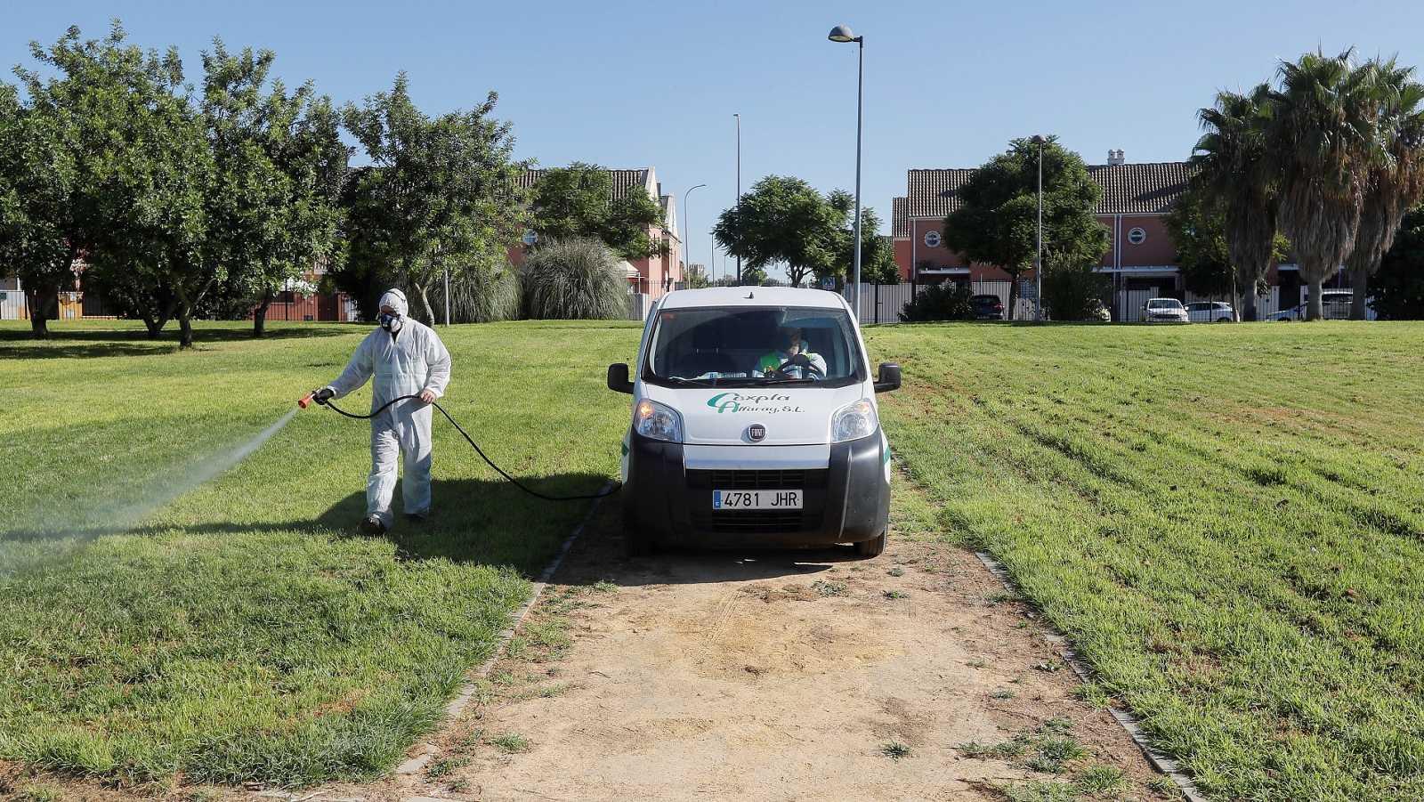 Un operario fumiga unos jardines en Coría del Río en Sevilla en un intento del Ayuntamiento por detener al virus del Nilo