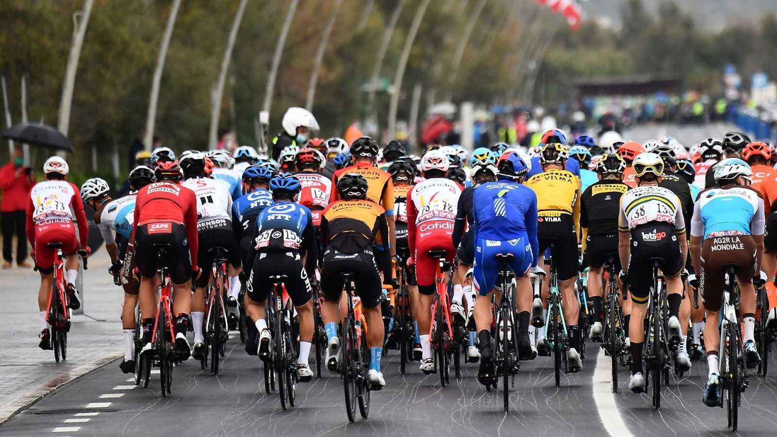 Varios corredores de espaldas durante el Giro de Italia