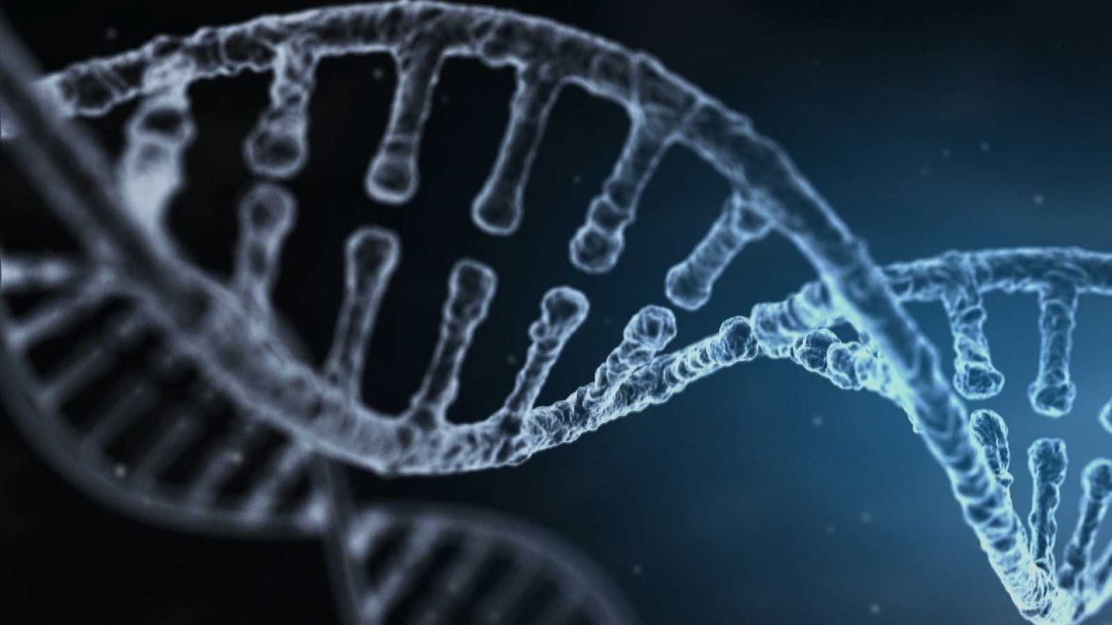 Los tests genéticos domésticos abren la posibilidad a conocernos mejor, pero traen ciertos riesgos
