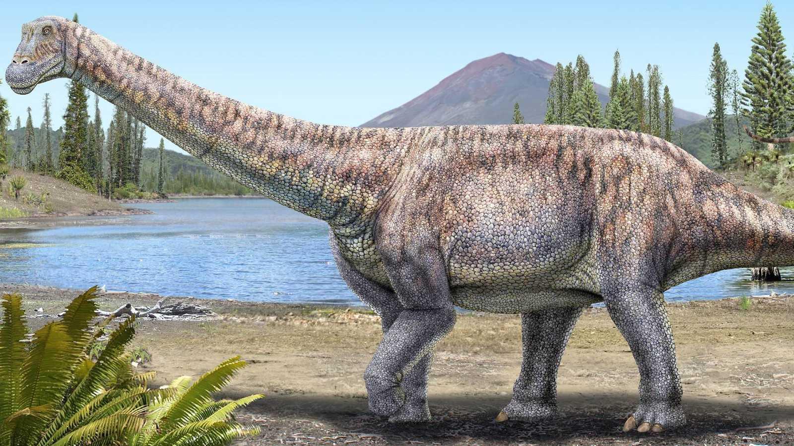El Arackar licanantay, nueva especie de titanosaurio encontrada en Chile.