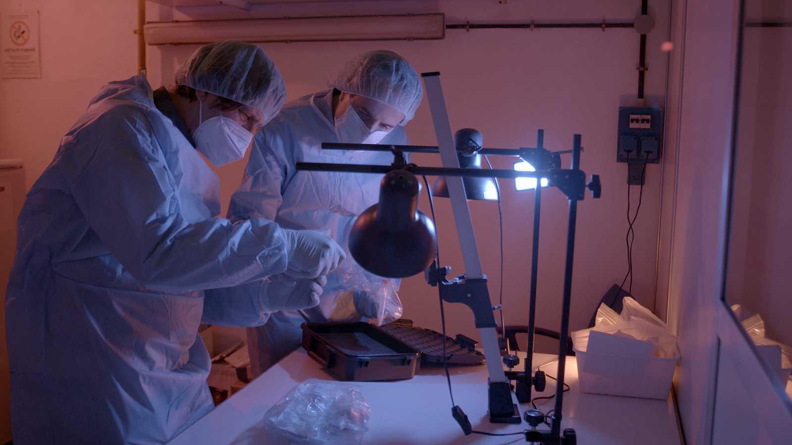 David Caramelli y José Antonio Lorente analizando huesos de Colón