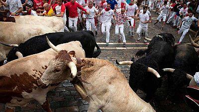 Los toros de Puerto de San Lorenzo abren San Fermín 2019