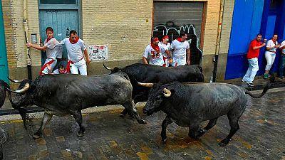 Los toros de José Escolar, en una imagen de San Fermín 2018