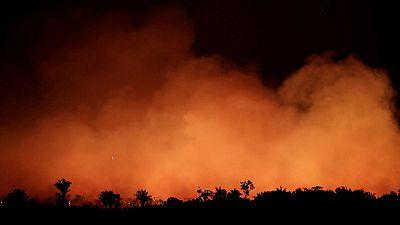 La Fiscalía federal de Brasil investiga la deforestación y los incendios en la Amazonía