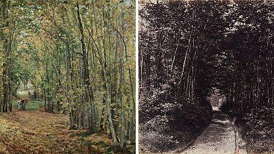 'El bosque de Marly', de Camille Pisarro1871 y'Sendero en el bosque', 1850-1860 Fotografía deEugène Cuvelier.