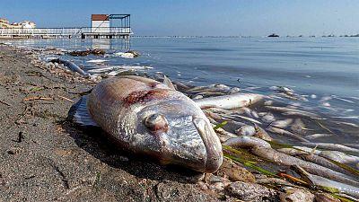 El Mar Menor se encuentra en una situación crítica.
