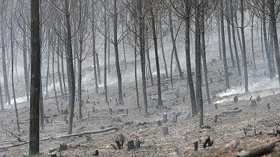El calentamiento global agravará las sequías, los temporales y los incendios forestales en España