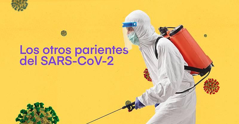 Los otros parientes del SARS-CoV-2