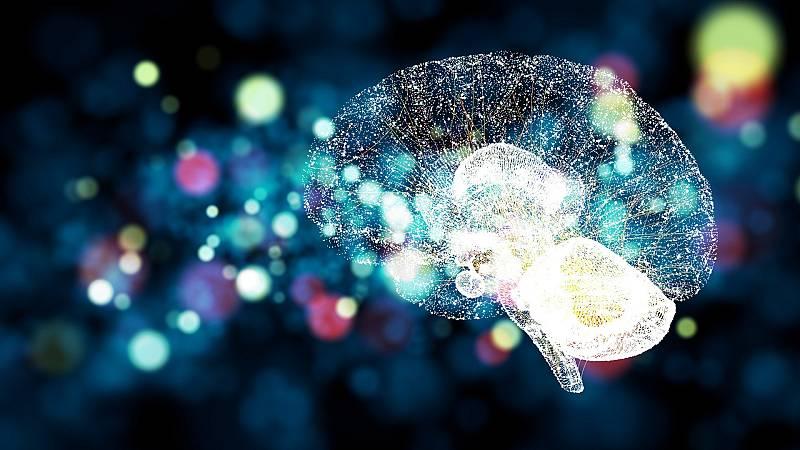 Investigadores españoles logran transformar células en neuronas capaces de reparar daños visuales