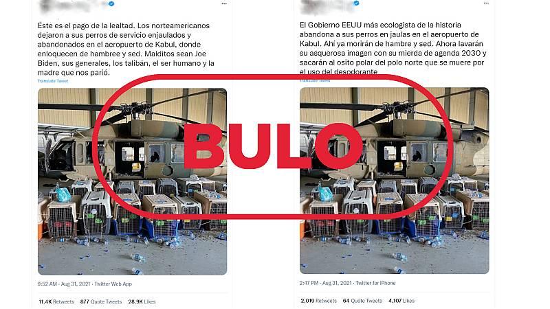 Mensajes de Twitter que dicen que EE.UU. ha abandonado en Kabul a los perros de las tropas estadounidenses con el sello bulo en rojo de VerificaRTVE