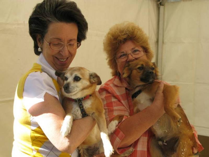 Dos voluntarias del Sociedad Protectora de Animales y Plantas de Madrid posan con una perra y un perro que se podrán adoptar en el Salón para la Adopción de Animales de Compañía de la Comunidad de Madrid.
