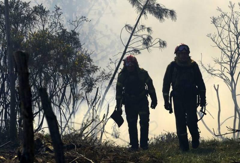 Los bomberos luchan contra el fuego.