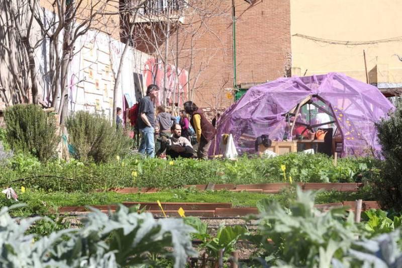 Xosé y otros vecinos conversan en una mañana soleada mientras cuidan del huerto de 'Esta es una plaza' en Madrid