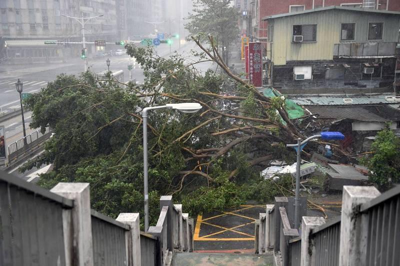 Vientos de hasta 250 km/h han derribado varios árboles en Taiwán tras el paso del tifón Soudelor.