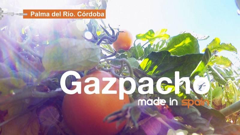 Preparamos gazpacho