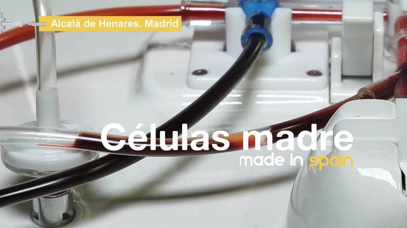 Descubrimos cómo se fabrican células madre