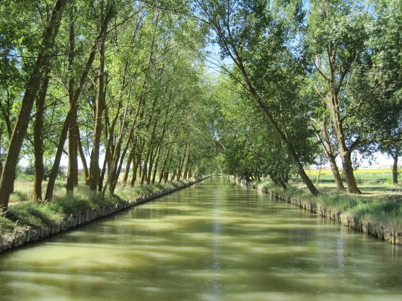 El Canal de Castilla en las proximidades de Medina de Rioseco.