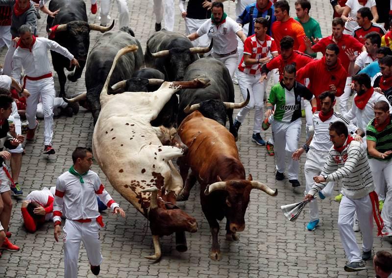 Un toro provoca la caída de un cabestro en el último encierro de los sanfermines 2016