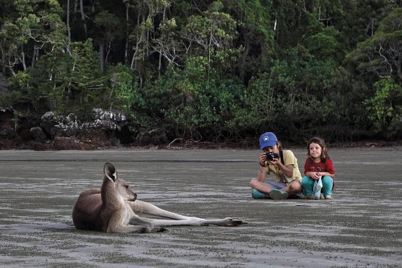 Unai y Amaia fotografían a un canguro en Australia.