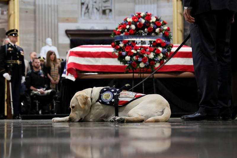 El perro guía de George H.W. Bush despide a su amo